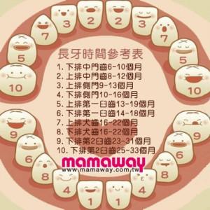 寶寶乳牙生長與護理